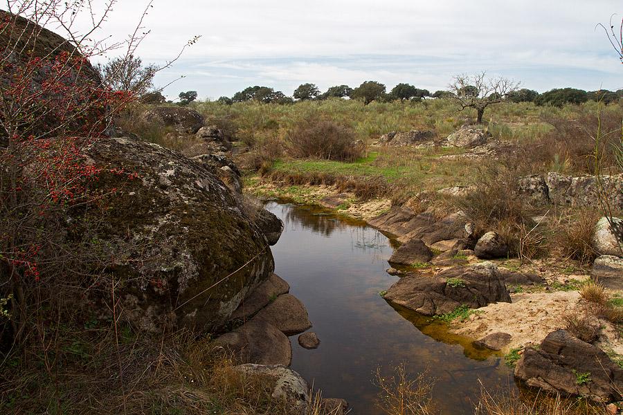 Parque natural Cornalvo