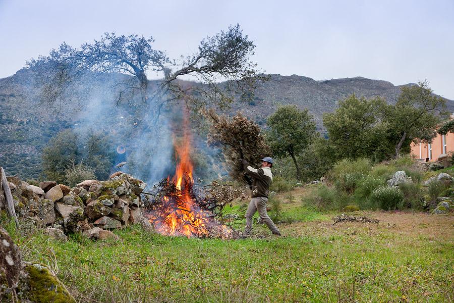 vuur, hout opstoken, Extremadura