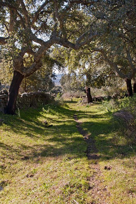 wandelen, Extremadura, Sierra de Montánchez